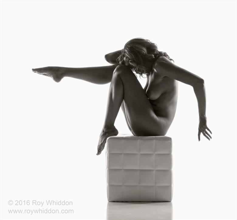 Artistic Nude Studio Lighting Photo by Photographer Roy Whiddon