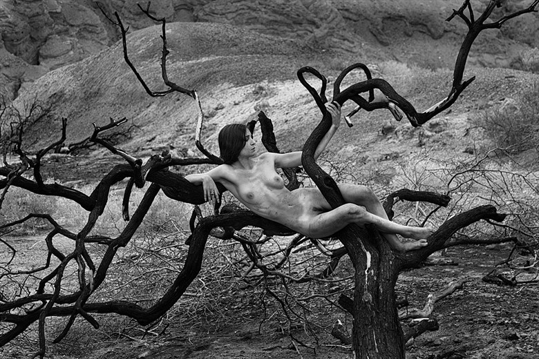 Artistic Nude Surreal Photo by Photographer MIchael Pannier