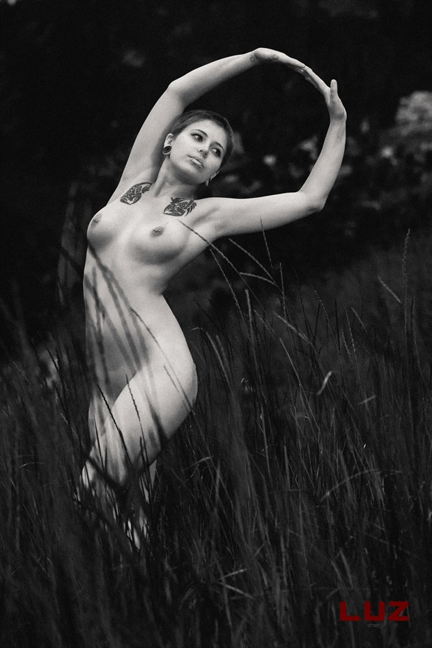 Artistic Nude Tattoos Photo by Photographer LUZ