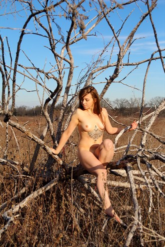 Artistic Nude Tattoos Photo by Photographer Mason