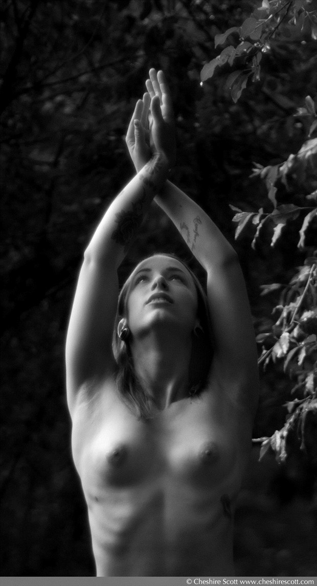 Ashley Laura Artistic Nude Artwork by Photographer Cheshire Scott