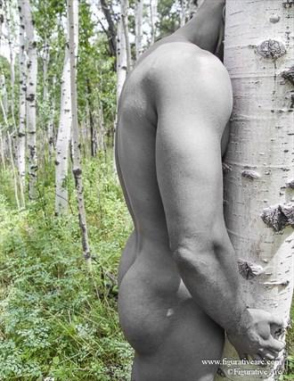 Aspen Artistic Nude Photo by Photographer Figurative Arc
