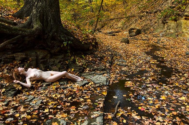 Auburn Light Artistic Nude Photo by Model Liv Sage