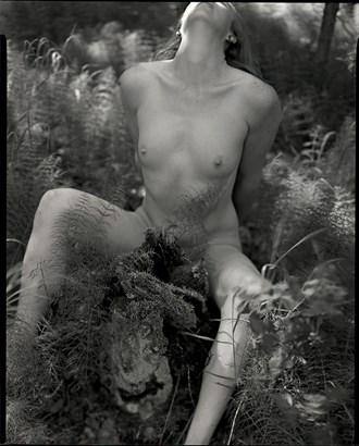Autumn %2324 Artistic Nude Photo by Photographer bthphoto
