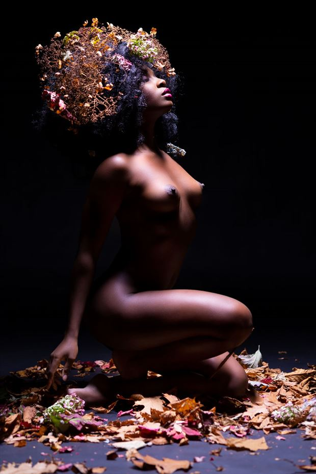 Autumn 3 Artistic Nude Photo by Photographer BenErnst