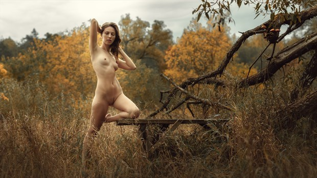 Autumn Artistic Nude Photo by Photographer dml