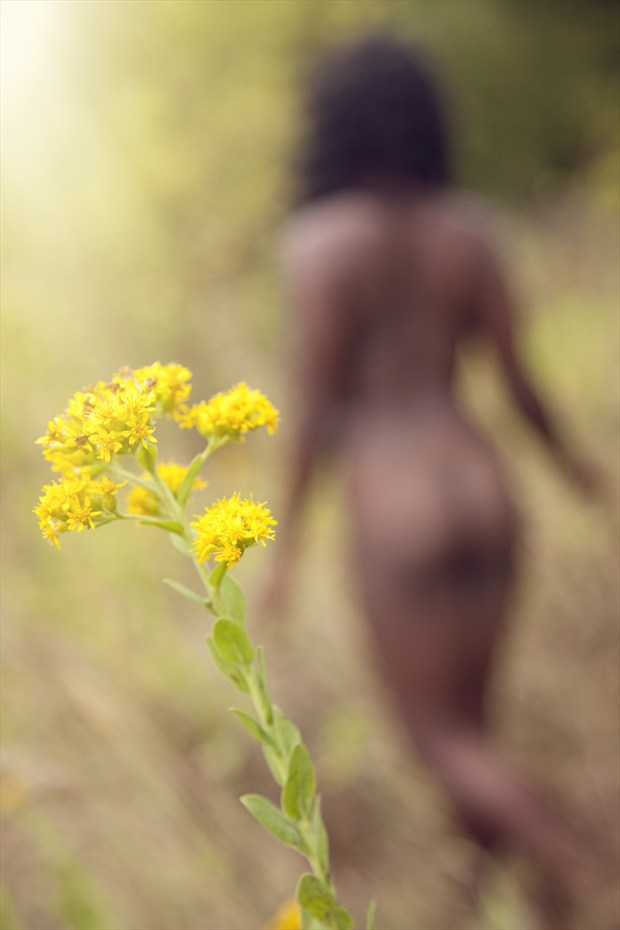 Autumn Dream Artistic Nude Photo by Photographer Openshaw Photo
