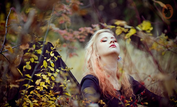Autumn Lady Nature Photo by Photographer Mlle Ch%C3%A8vre