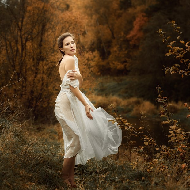 Autumn Nature Photo by Photographer dml