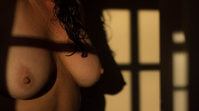 Autumnal Light is an Undeniable Temptress Artistic Nude Photo by Photographer Mrs. S
