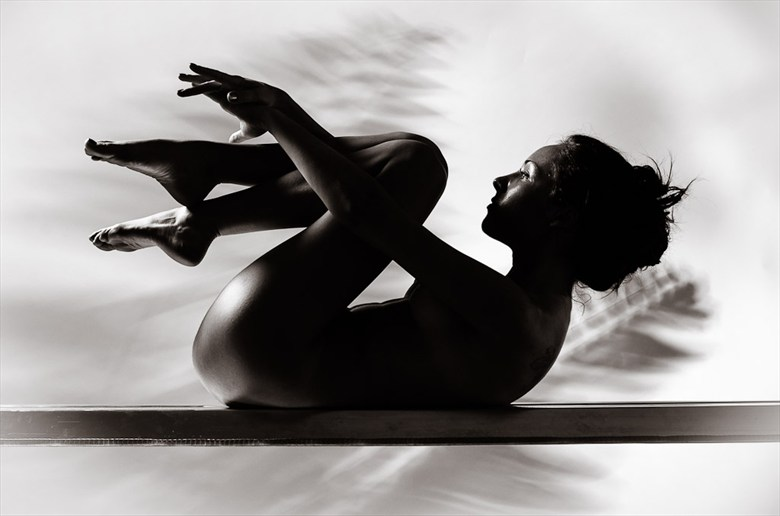 Awakening Silhouette Photo by Photographer Q Imagery