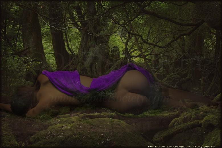Babe in the woods Artistic Nude Photo by Photographer photo artist