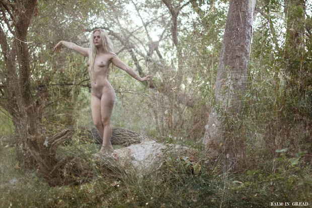 Balance Artistic Nude Photo by Photographer balm in Gilead