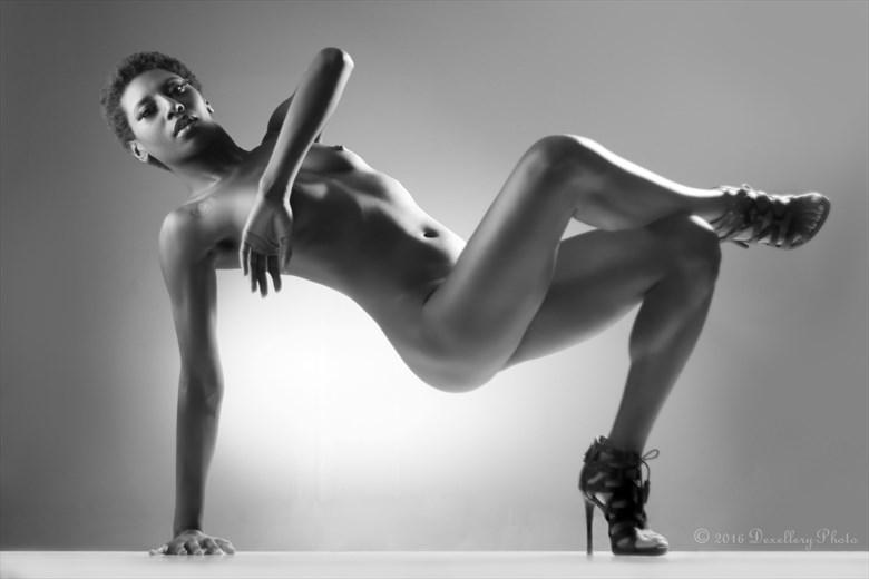 Balance Pt. 1 Artistic Nude Photo by Photographer Dexellery Photo