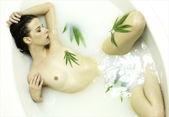 Bamboo leaf milk bath Artistic Nude Artwork by Photographer Chris Gursky