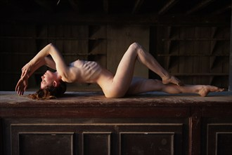 Bare bones Artistic Nude Photo by Photographer John Evans