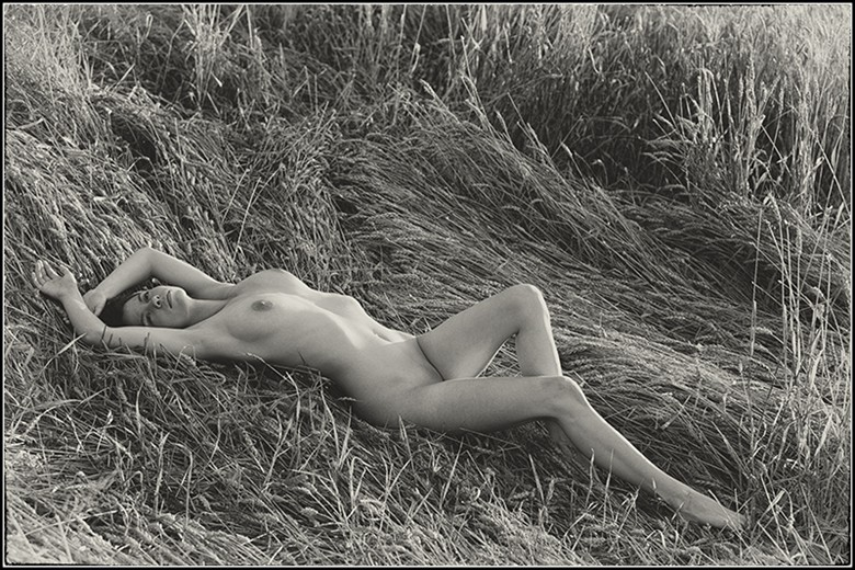 Basking Artistic Nude Photo by Photographer Magicc Imagery