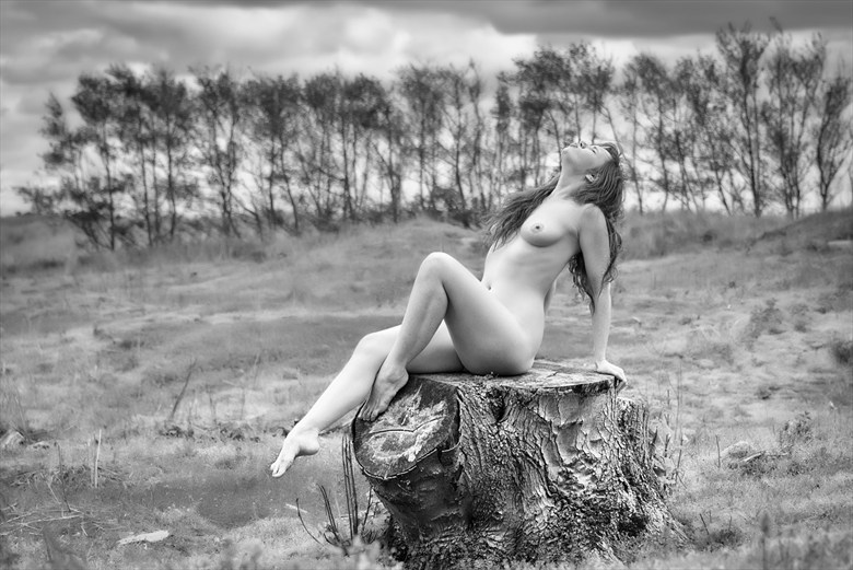 Basking Artistic Nude Photo by Photographer Rascallyfox
