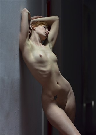 Bathing in the Sky Light Artistic Nude Photo by Photographer Alan H Bruce