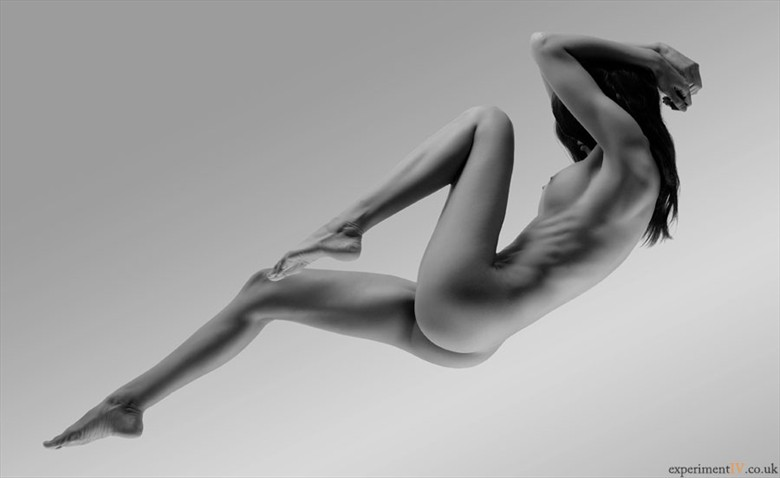 Beautiful Lines Artistic Nude Photo by Photographer Terry King