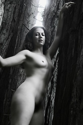 Beauty & the Bark Artistic Nude Photo by Artist AnneDeLion