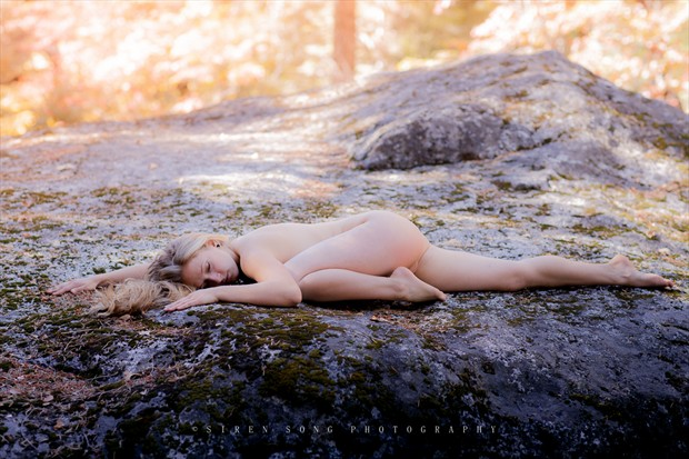 Beauty Sleep Nature Photo by Model Manzanita