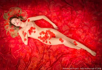 Beauty on red Implied Nude Photo by Photographer Bokehccino Project
