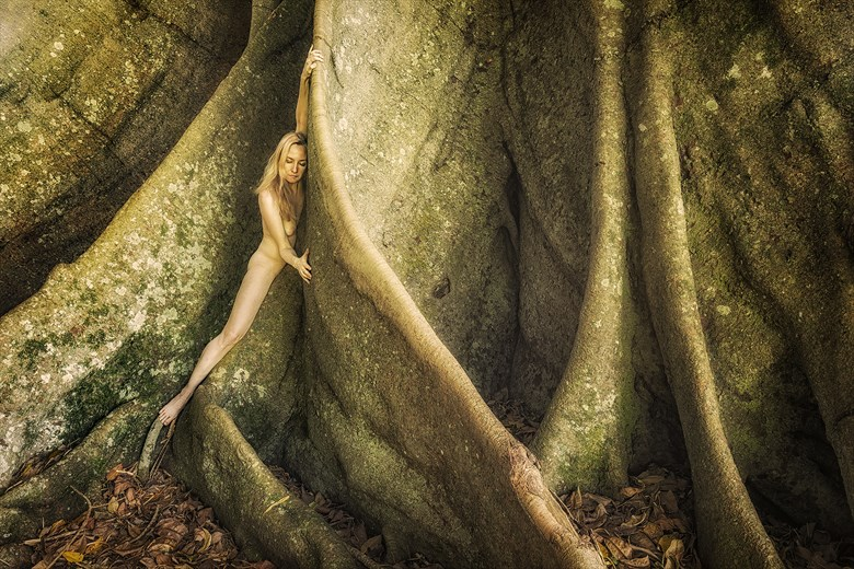 Becoming Figness  Artistic Nude Photo by Photographer TreeGirl