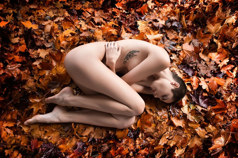 Bed Of Leaves Artistic Nude Photo by Photographer Ciaran