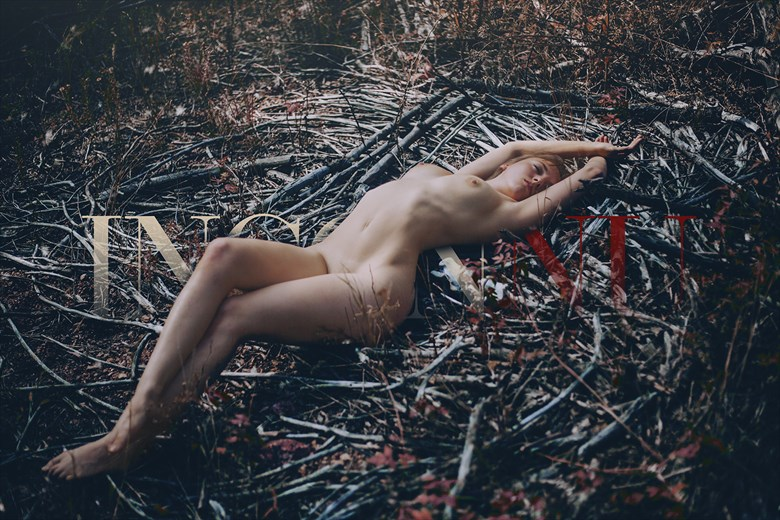 Bed of Fallen Branches Artistic Nude Photo by Photographer INCONNU