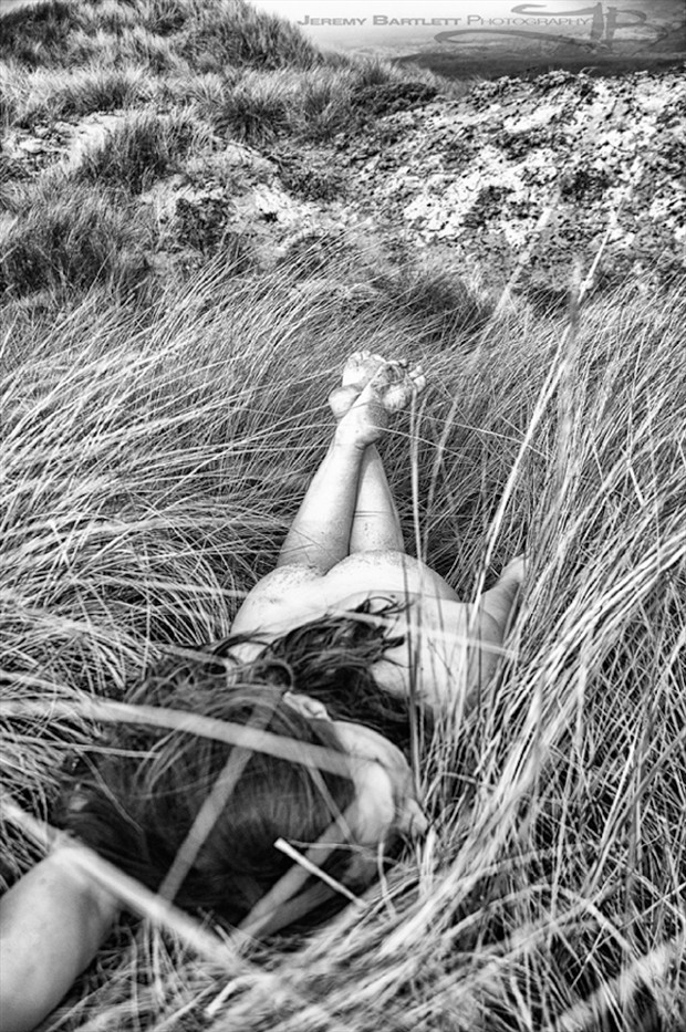 Bed of Reeds Artistic Nude Photo by Photographer Jeremy Bartlett
