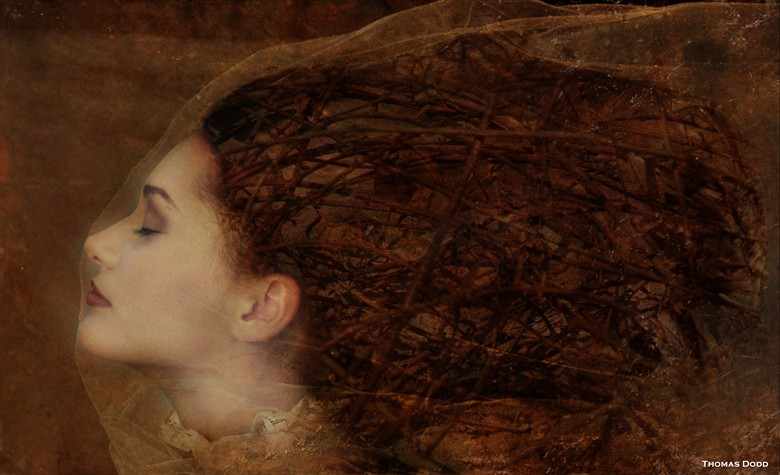 Behind the Veil Surreal Artwork by Photographer Thomas Dodd