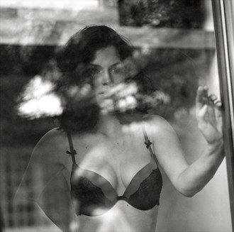 Behind the glass  Lingerie Photo by Photographer Snow Leopard