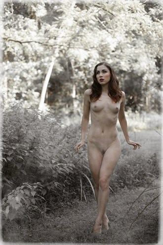 Belle Epoque Artistic Nude Photo by Photographer NielG