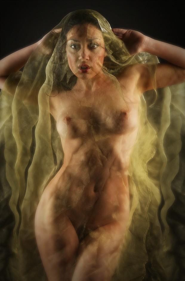 Beneath a Golden Veil Artistic Nude Photo by Photographer MaxOperandi