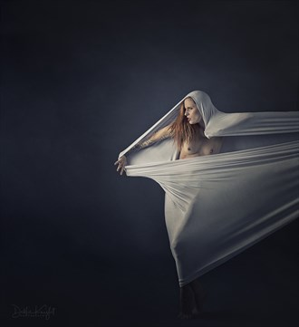 Beyond the Veil Artistic Nude Artwork by Photographer DKnight