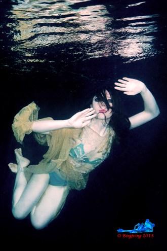 Bikini Fantasy Photo by Photographer Bogfrog