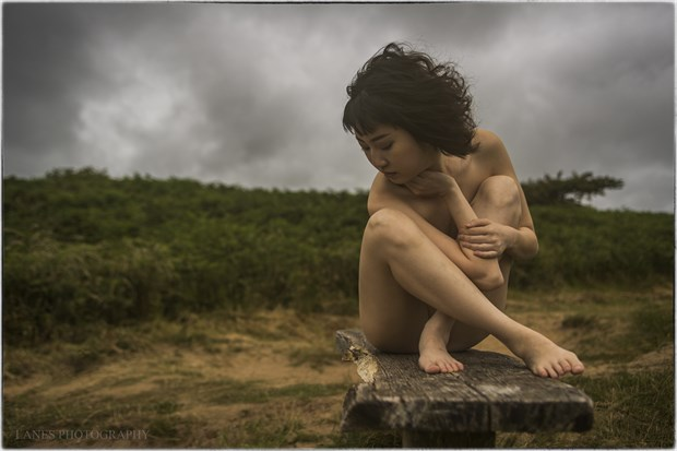 Blowing Through The Jasmine In My Mind Artistic Nude Photo by Photographer Lanes Photography