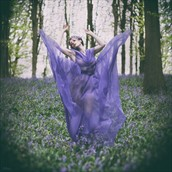 Bluebell Nature Photo by Model Muse