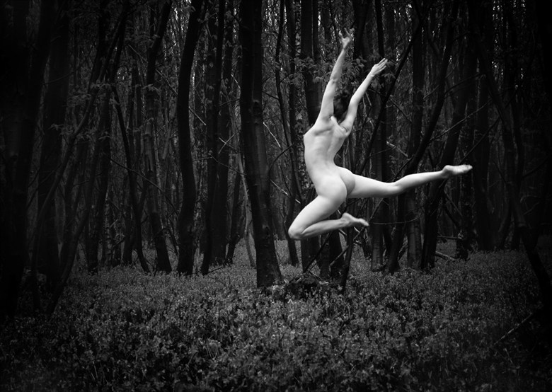 Bluebell Wood Leap Artistic Nude Photo by Photographer RayRapkerg