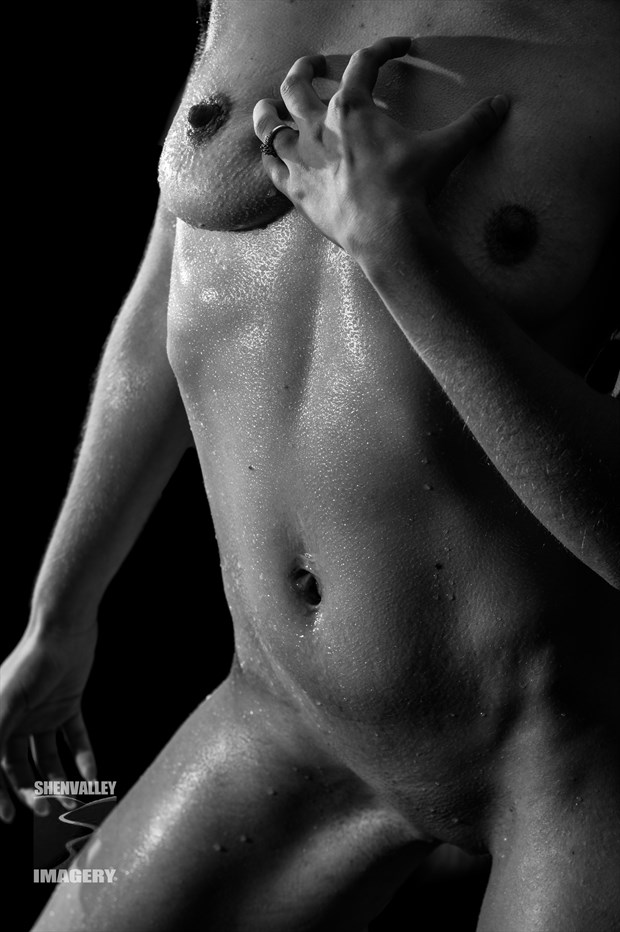 Bodyscape %231 Artistic Nude Photo by Photographer ShenValley Imagery