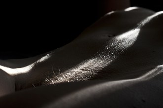 Bodyscape 1 Artistic Nude Photo by Photographer Julian Lucas