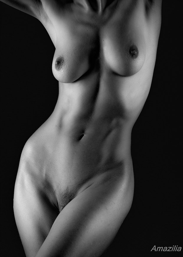Bodyscape 6 Artistic Nude Photo by Photographer Amazilia Photography