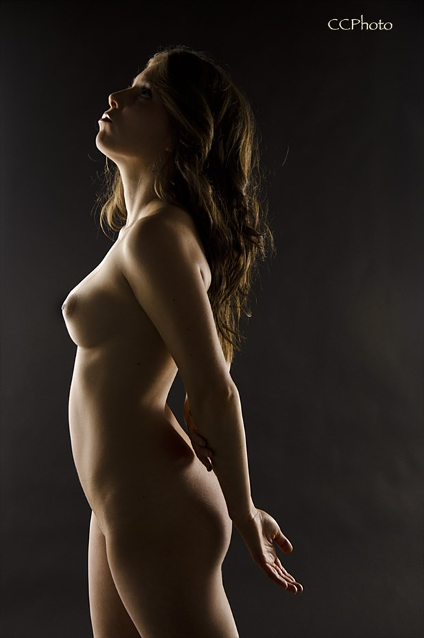 Bodyscape Artistic Nude Photo by Photographer CCPhoto