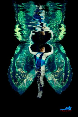 Bound with Wings, Underwater Portrait Photo by Photographer Bogfrog