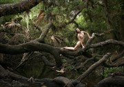 Branches Artistic Nude Artwork by Photographer Chris Gursky