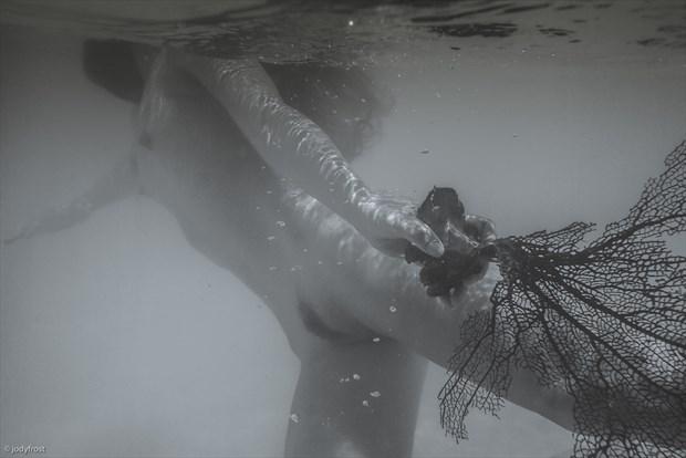 Brandi with Sea Fan 2 Artistic Nude Photo by Photographer jody frost