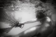 Brandi with Sea Fan Artistic Nude Photo by Photographer jody frost
