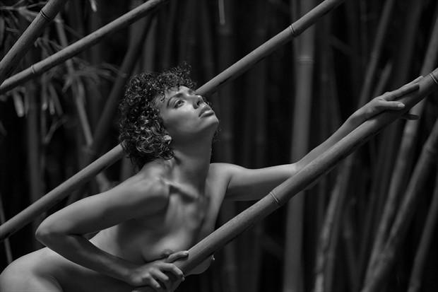 Brenna Artistic Nude Photo by Photographer DanWarnerPhotography