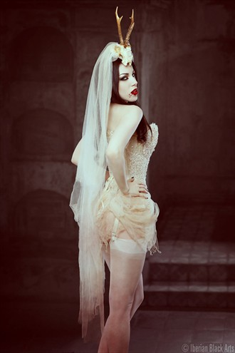 Bride of Dracula II Lingerie Photo by Model Morgana